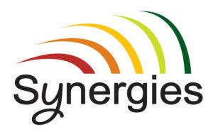 Logo Synergies 53