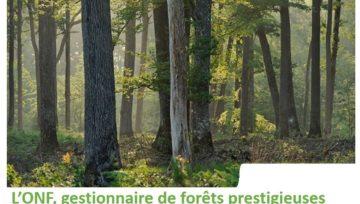 Onf Agence Régionale des Pays de La Loire