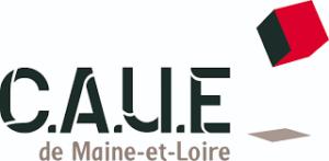 Logo Caue 49