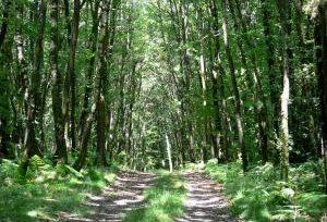 Parc Naturel Régional Normandie Maine